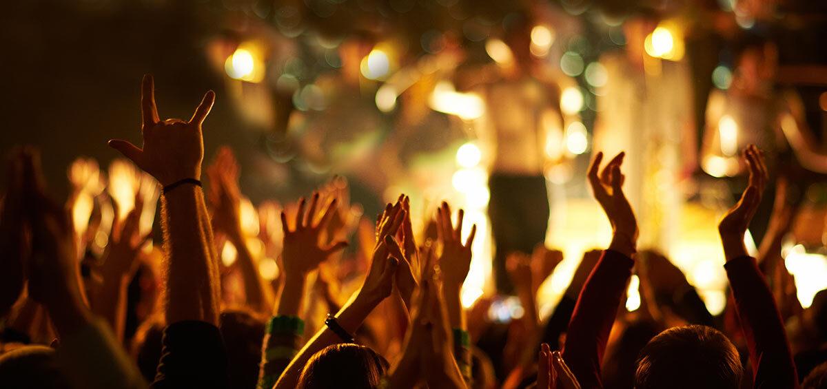 Seguridad en eventos, concierto