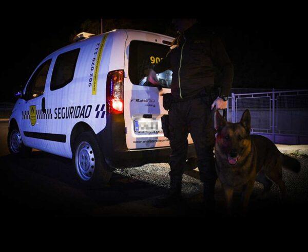 Beneficios de las unidades caninas para incrementar la seguridad de los polígonos industriales