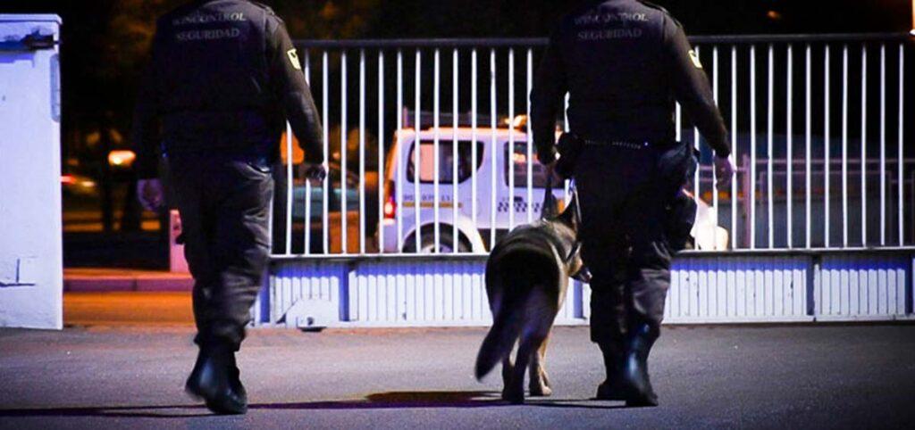 Dónde podemos encontrar este tipo de servicio de seguridad con refuerzo canino en Alicante